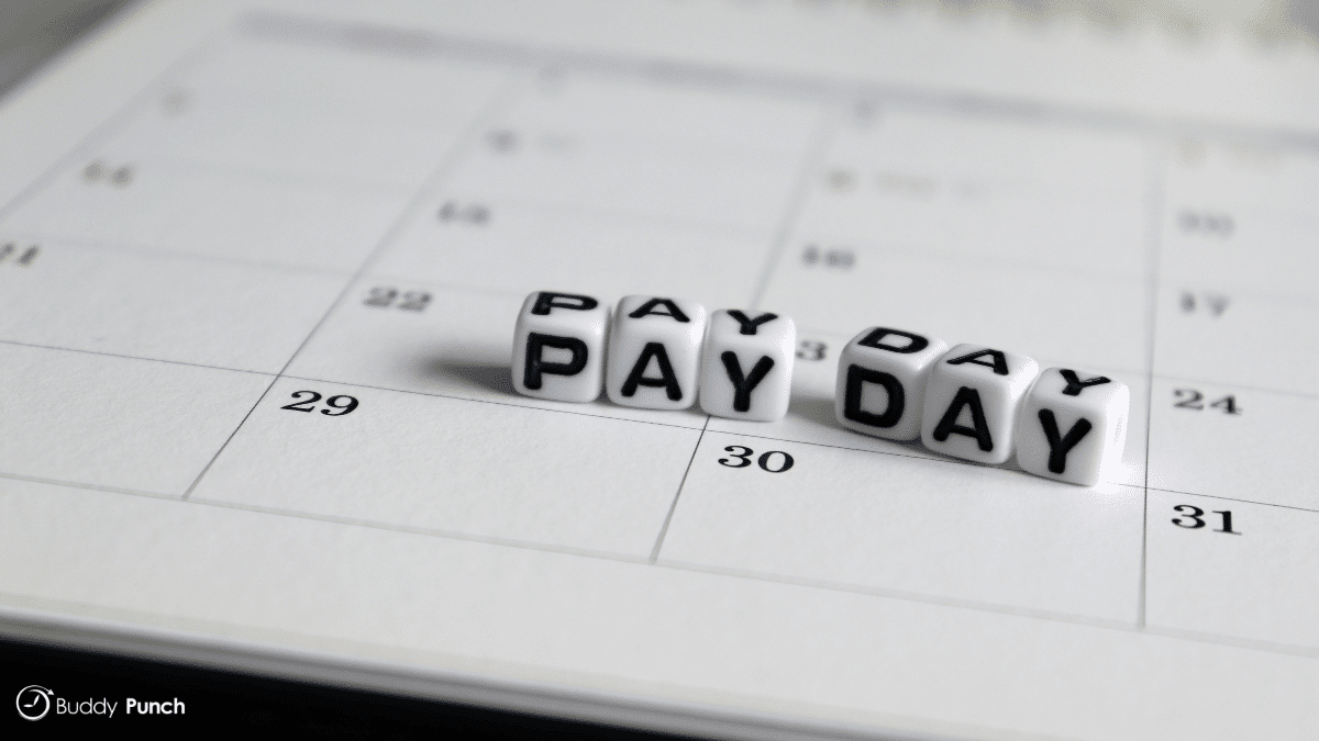 There are several different pay period types available and each will determine how frequently your employees are paid.