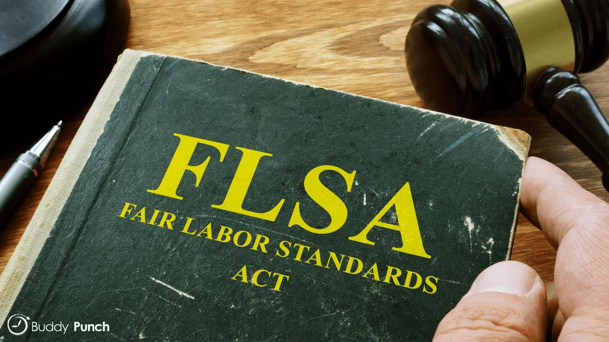Man reviewing the FLSA handbook.