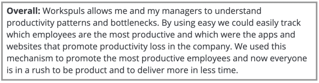 """Workpuls Review: """"Understand productivity patterns"""""""