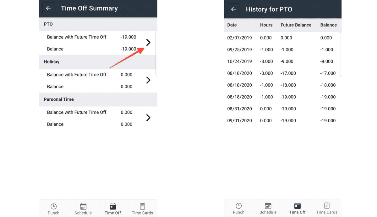 Example of Time off summary and history for PTO